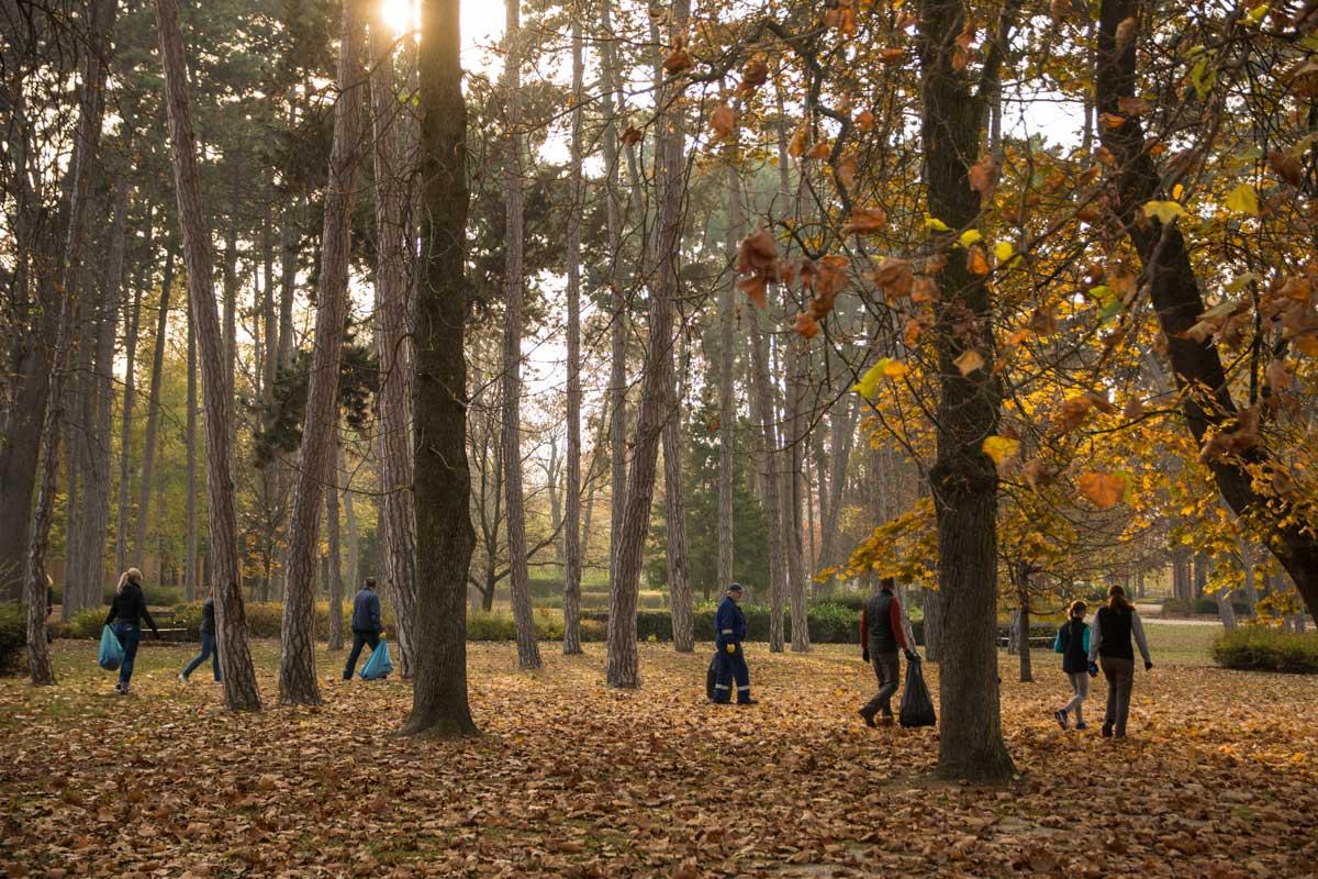 Siófoki önkéntesek a lemenő nap fényében. / Fotó: szemetszedes.hu - Kalmár Krisztián